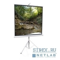 Экран на штативе ScreenMedia 200x200 см (Apollo-Т STM-1103)